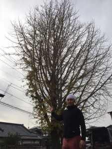 茨城県筑西市で店舗・倉庫・ご自宅の不用品回収&引越手伝い